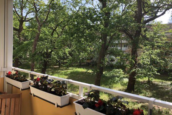 Gemütliche Wohnung im grünen Babelsberg